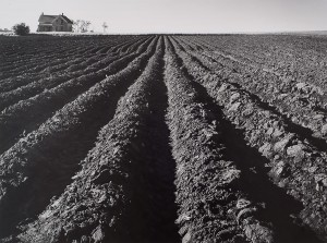 Wright Morris, Plowed Land, Iowa-1947
