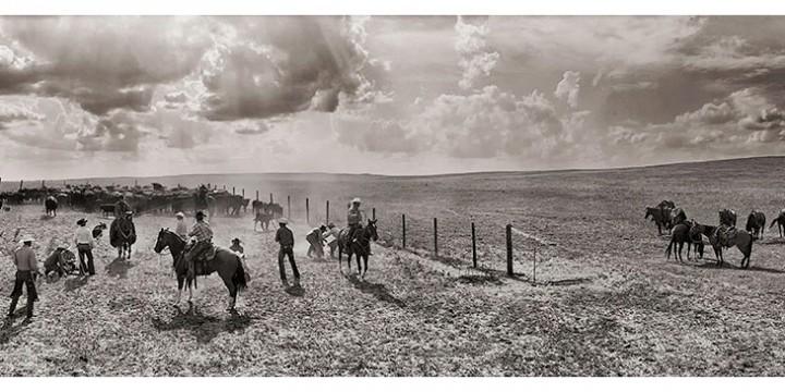 Charles Guildner, Haythorn Branding Panorama '04, photograph