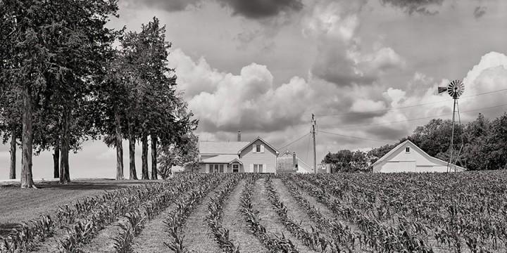 Charles Guildner, Matthies Farm, photograph