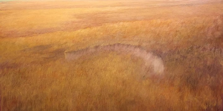 Keith Lowry, Fall Grass, oil