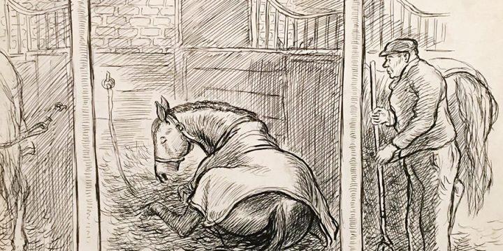 Grant Reynard, Oh' Boy in His Stall, ink, n.d.