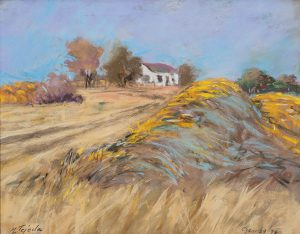 Mary Louise Tejeda Brown, A Nebraska Sketchbook #2137- Wasserburger Farm. The reflection of the blue sky on the yellow hay had caught my eye. January 29, 1998, 11:00 a.m., pastel, 1998