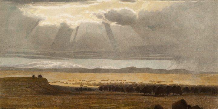 William Holbrook Beard, On the Prairie, steel engraving, 1890