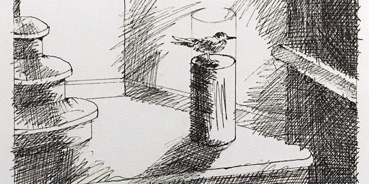 Dan Howard, Soliloquium: V, preliminary study (bird), ink on paper, 2003