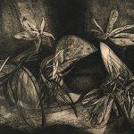 Freda Spaulding, Forms in Flight, etching (7/10), 1961