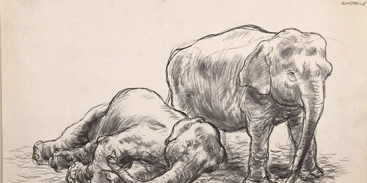 Grant Reynard, Circus Elephants, ink, n.d.