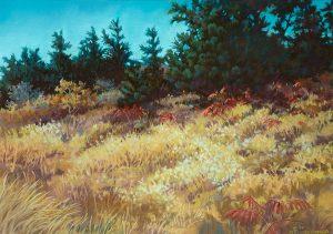 Donna Binfield, Suma Ridge, pastel, 1993