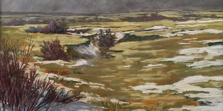 Mary Louise Tejeda Brown, Large Landscapes #1057-Spring Storm Passing This is a favorite corner where erosion has permitted a little cover for chokecherry and wild plum., pastel, c. 1997-1998