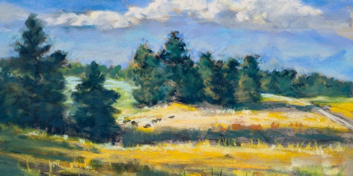 Mary Louise Tejeda-Brown, A Nebraska Sketchbook #2146-South of Richardson House on East Ash Creek Road. pastel, 1998