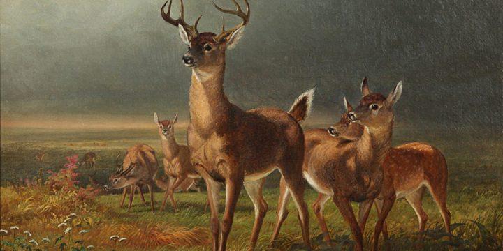 William Holbrook Beard, Deer on the Prairie, oil on canvas, c. 1890