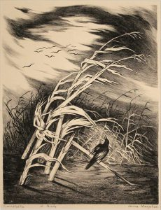 Jenne Magafan, Cornstalks, lithograph (edition of 10)