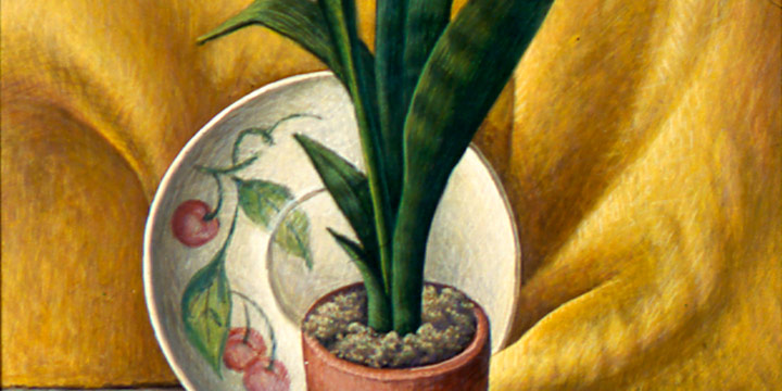 Aaron Pyle, Untitled (still life with snake plant), egg tempera, 1956