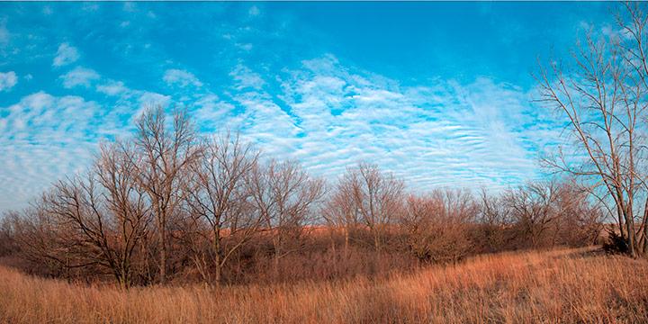 John Spence, Landscape Series: North of Filley, Gage County, Nebraska, December 19, 2010, silver halide color photograph, 2010