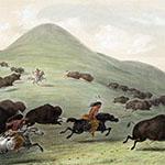 George Catlin, Catlin's North American Indian Portfolio, Buffalo Hunt, Chase - No. 6, lithograph, c. 1844