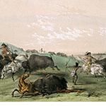 George Catlin, Catlin's North American Indian Portfolio, Buffalo Hunt, Chase - No. 7, lithograph, c. 1844