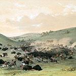 George Catlin, Catlin's North American Indian Portfolio, Buffalo Hunt, Surround, lithograph, c. 1844