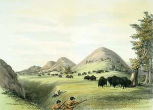 George Catlin, Catlin's North American Indian Portfolio, Buffalo Hunt, Approaching In a Ravine, lithograph, c. 1844