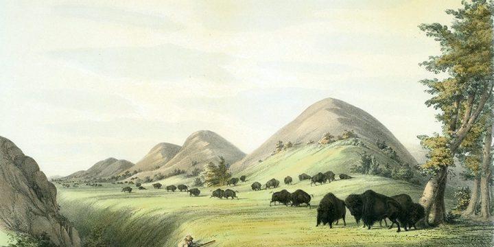 NEBRASKA: Catlin's North American Indian Portfolio – The MONA Collection
