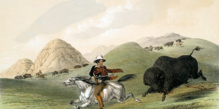 George Catlin, Catlin's North American Indian Portfolio, Buffalo Hunt, Chasing Back, lithograph, c. 1844