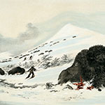 George Catlin, Catlin's North American Indian Portfolio, Dying Buffalo Bull In Snow Drift, lithograph, c. 1844