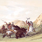 George Catlin, Catlin's North American Indian Portfolio, Attacking the Grizzly Bear, lithograph, c. 1844