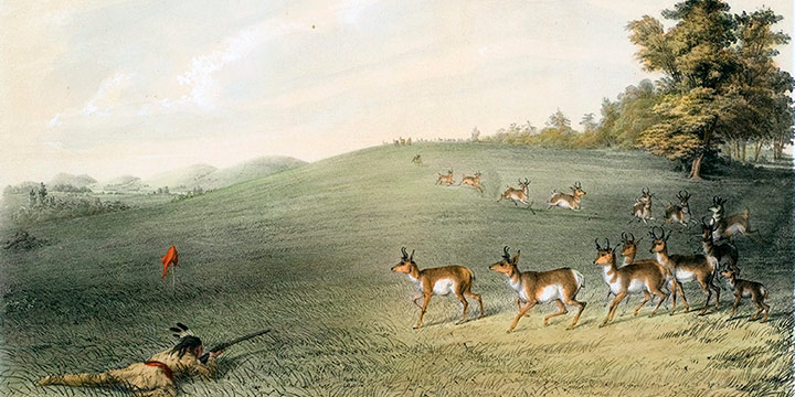 George Catlin, Catlin's North American Indian Portfolio, Antelope Shooting, lithograph, c. 1844