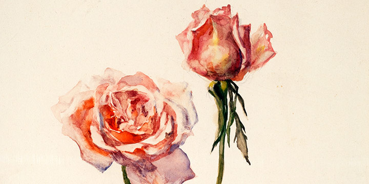 Eulabee Dix, Still Life of Two Pink Roses, watercolor on paper, c. 1950s