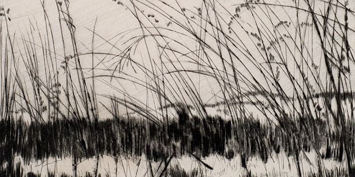 Lyman Byxbe, Weed Lace, drypoint, c. 1944-1945,
