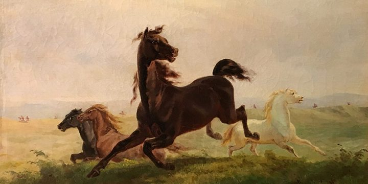 Rudolph F. Kurz, Wild Horses in Nebraska, oil on canvas, 1857