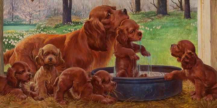 John Clymer, Cocker Spaniel with Puppies, oil on masonite, c. 1947