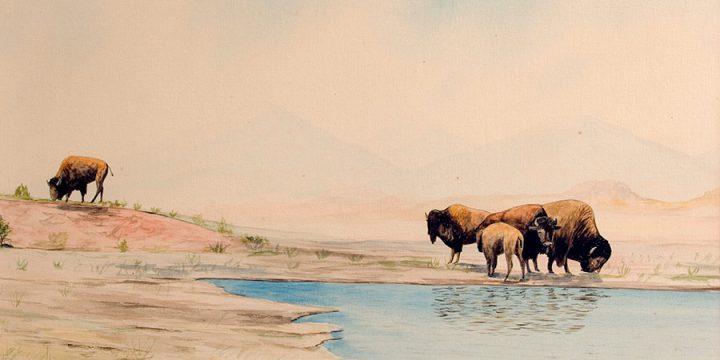 Miles Maryott, Where the Buffalo Roam, watercolor, 1910