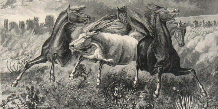 William de la Montagne Cary, A Stampede of Wild Horses, wood engraving, published in The Aldine