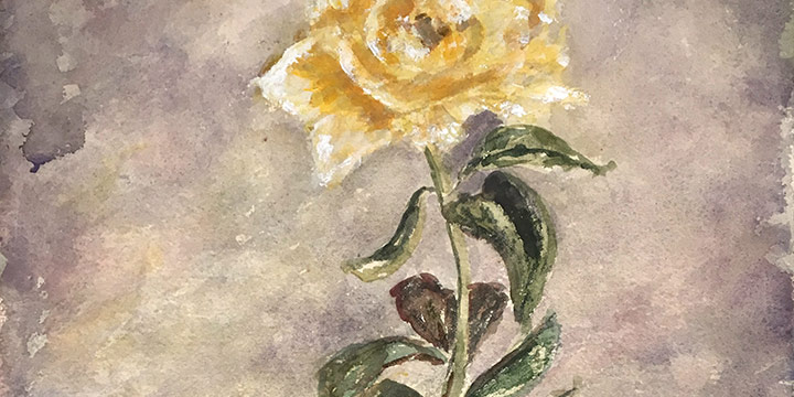 Miriam Worlock, Untitled (vase with yellow rose), watercolor, n.d.