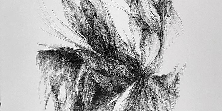 Betty Sieler, Growing Forlm, ink, 1977-1978