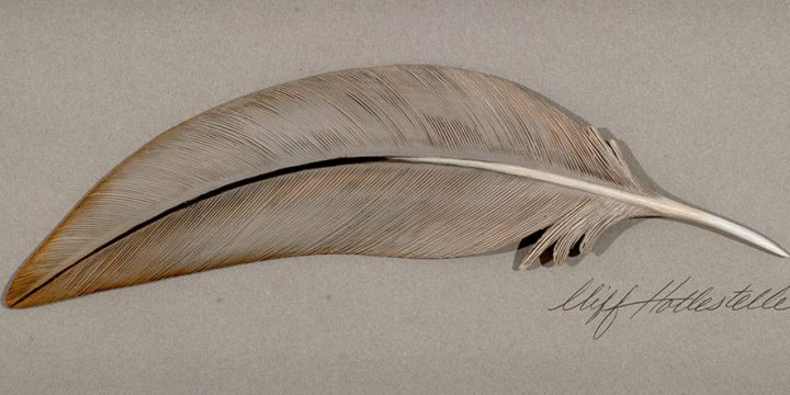 Cliff Hollestelle, The Chase - Sandhill Crane Feather, woodcarving, jelutong, acrylic, 1998