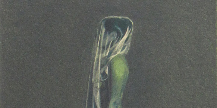 Minna Resnick, Veiled Woman (Circle #1), lithograph (21/30), 1983