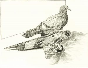 Robert Weaver, Pigeon on a Toy Plane, pencil, 1978