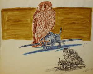 Robert Weaver, Untitled (hawks and planes), ink wash, 1983