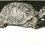 Robert Weaver, Turtle, lithograph, 1982