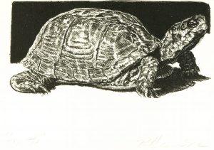 Robert Weaver, Turtle, lithograph, 1982