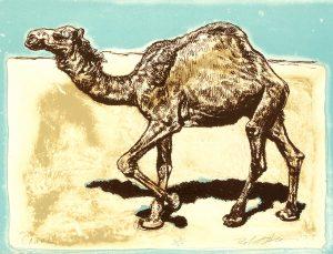 Robert Weaver, Camel, color lithograph (23/25), 1977