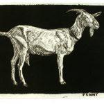 Robert Weaver, Penny, etching (3/10), 1983
