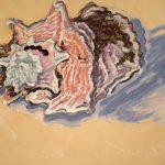 Robert Weaver, Seashell, oil on paper, 1974