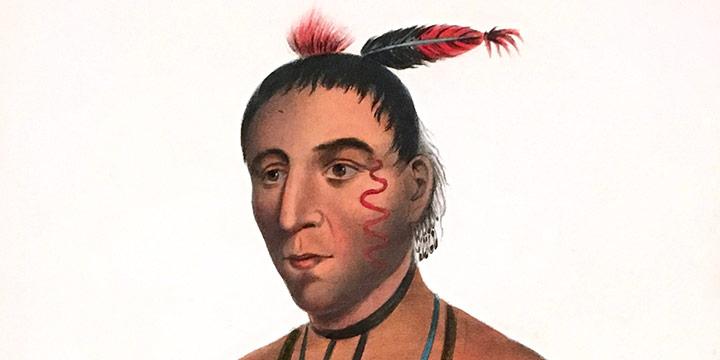 James Otto Lewis, Wa-Kawn, a Winnebago Chief, handcolored lithograph (octavo), 1865-1870