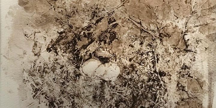 Jean Welstead, Birdnest, collograph, 1976