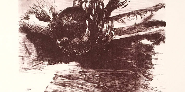K. James, The First Suite-Bert Brought Me Some Pheasant Feathers , lithograph (6/28), 1973