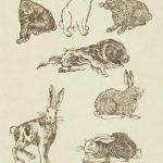 Rudy Pozzatti, Darwin's Bestiary - Rabbits, artist's book: lithograph (79/191),1985-1986