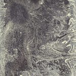 Rudy Pozzatti, Darwin's Bestiary - Gossamer, artist's book: lithograph (79/191), 1985-1986