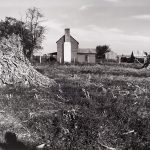 Wright Morris, Farmhouse with White Chimney from Cornfield, Near Culpeper, Virginia, 1940, silver print, 1975