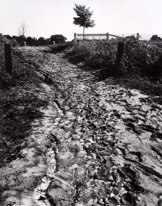 Wright Morris, Rutted Road, Rural Ohio, 1942, silver print, 1975